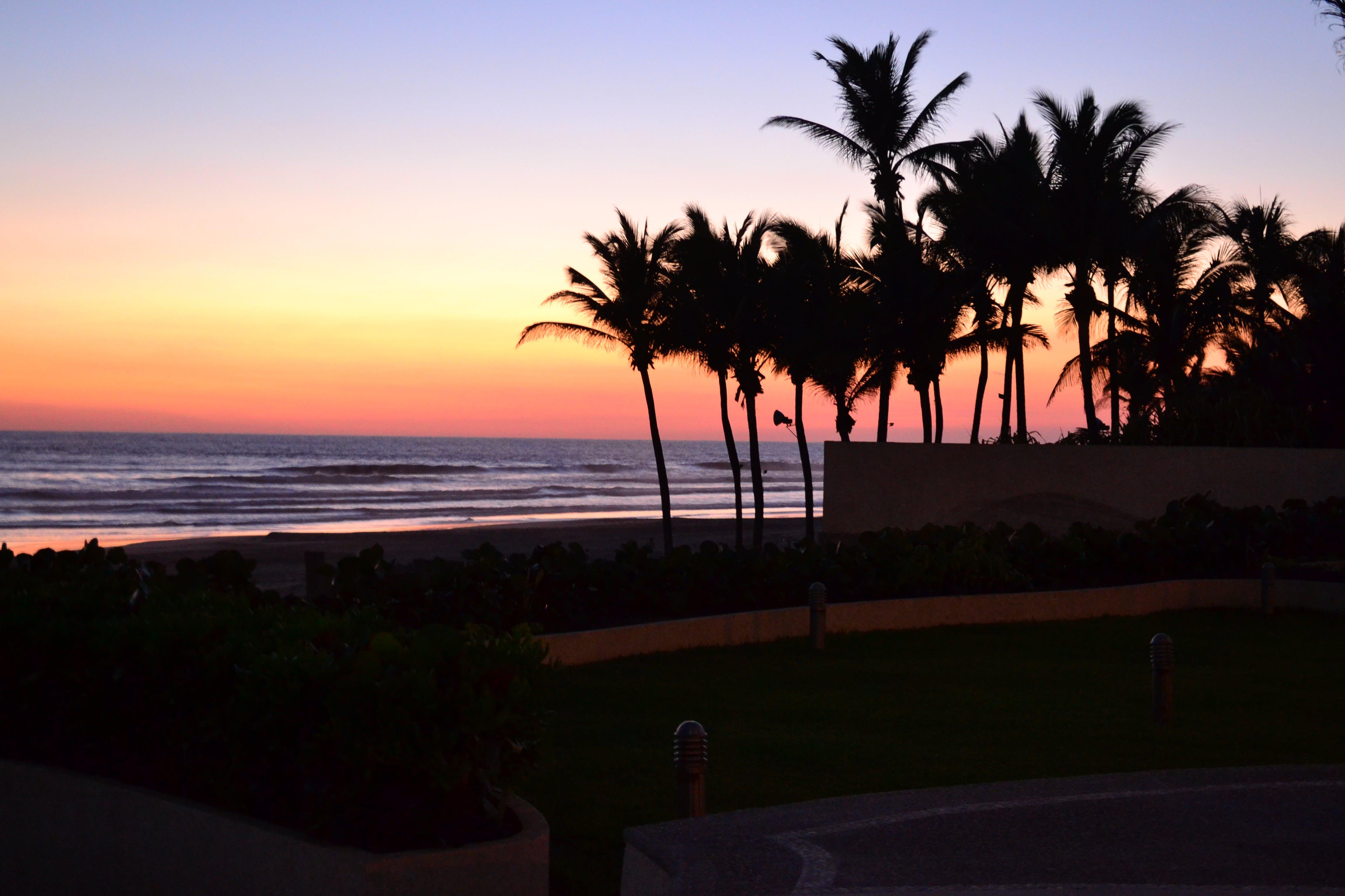 Free stock photo of acapulco, beach, evening, mexico