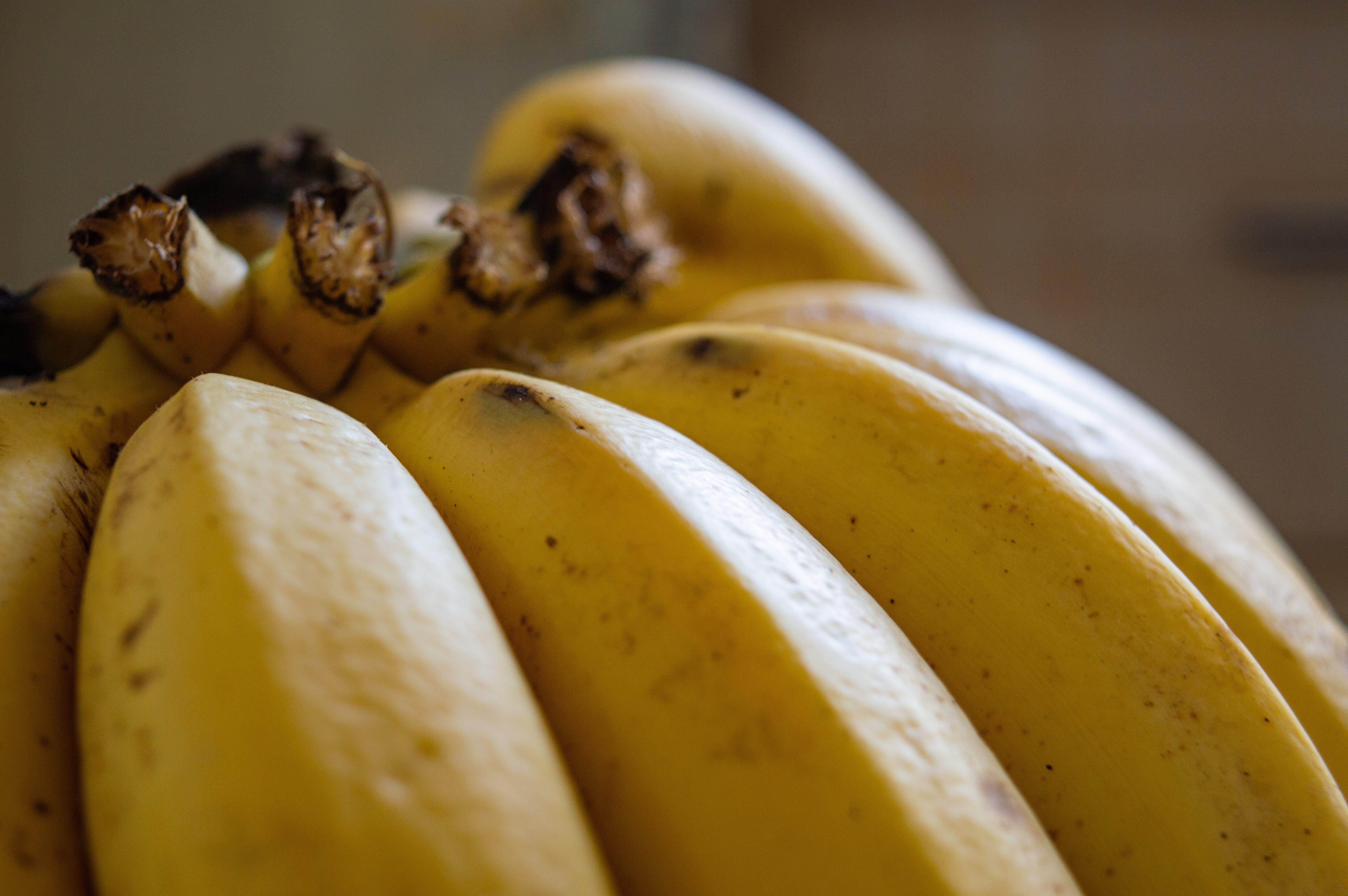 Free stock photo of banana, food, fresh, fruit