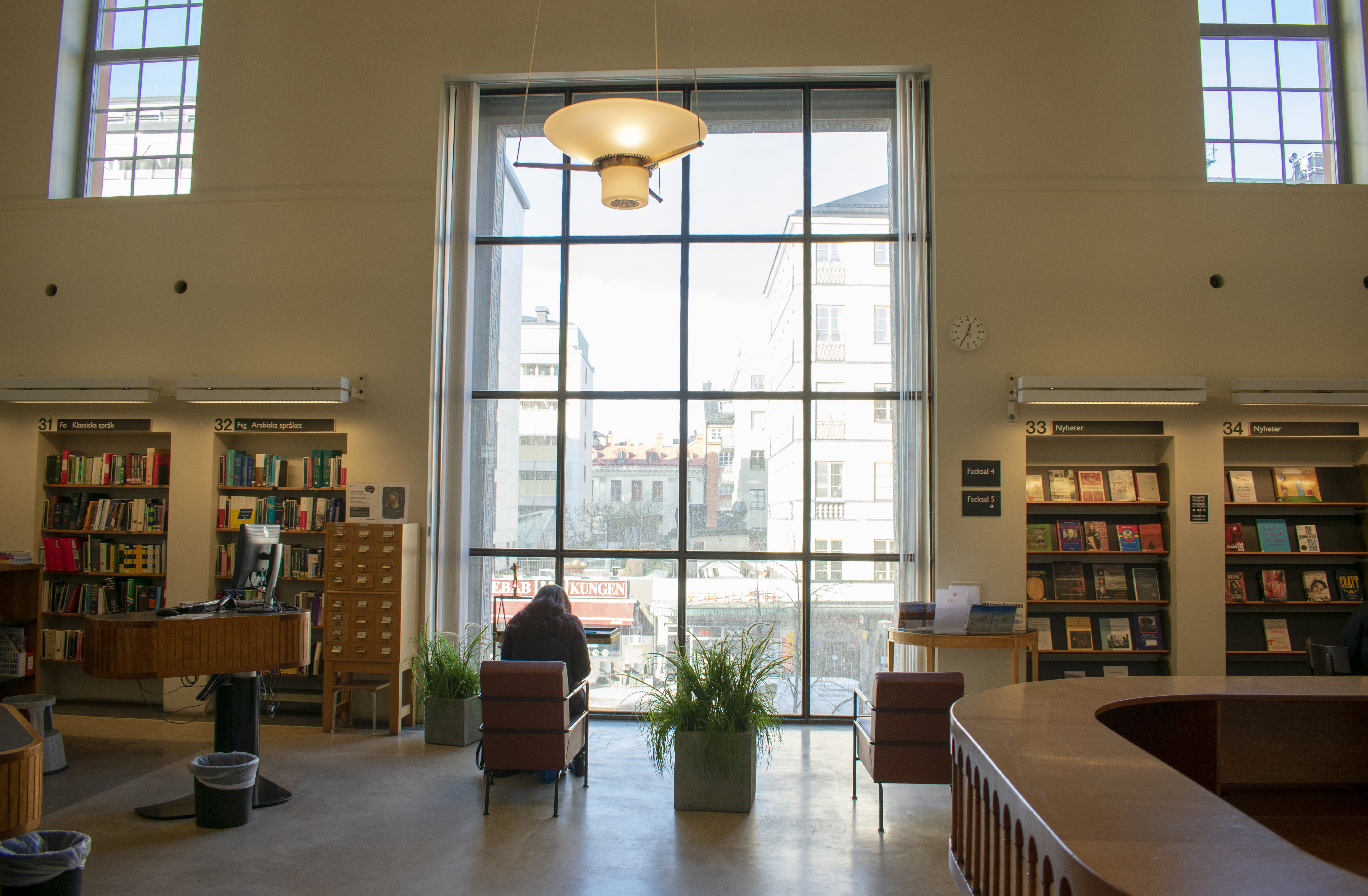 Free stock photo of library, reading
