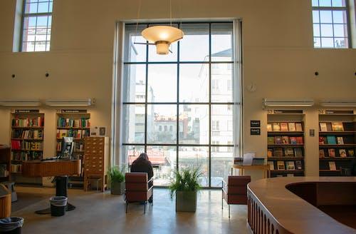 Бесплатное стоковое фото с библиотека, чтение
