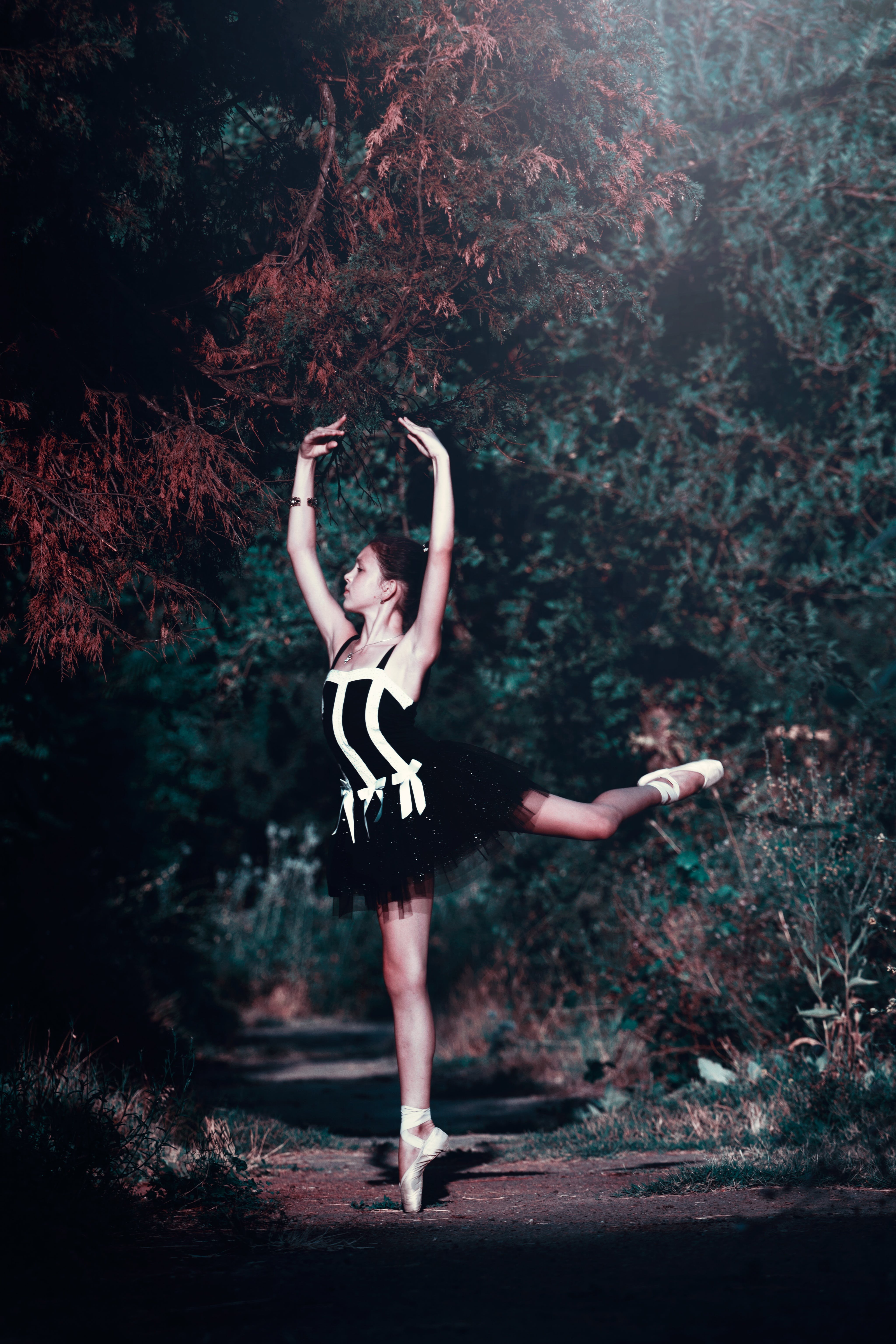 Dancing Ballerina With Green Leafed Trees Background