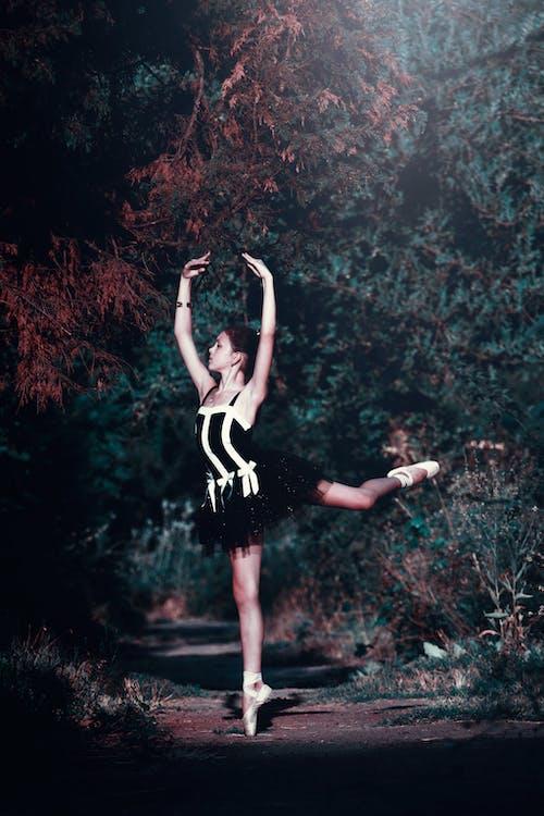 Ingyenes stockfotó Balett-táncos, erdő, lány, nő témában