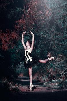 free stock photo of ballerina ballet ballet dancer