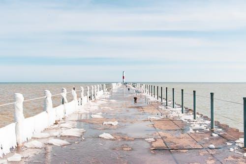 물가, 위대한 호수의 무료 스톡 사진