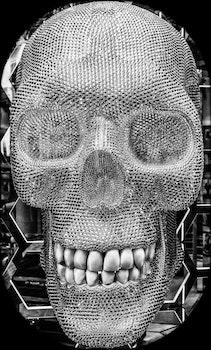 Grey Skull Frame Ornament