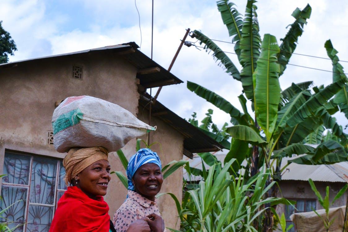 Kopi Memiliki Peran yang Sangat Penting dalam Perekonomian Uganda