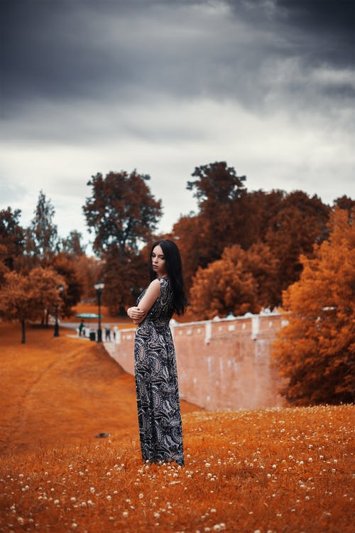 나무, 드레스, 모델, 사람의 무료 스톡 사진