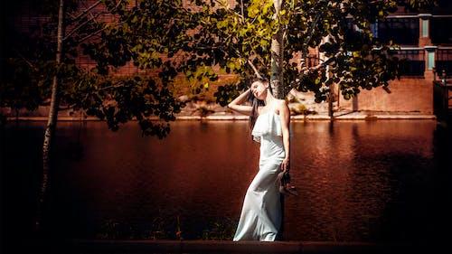 Foto stok gratis air, anggun, cewek, fashion