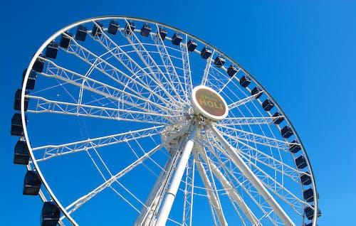 Free stock photo of ferris wheel, navy pier