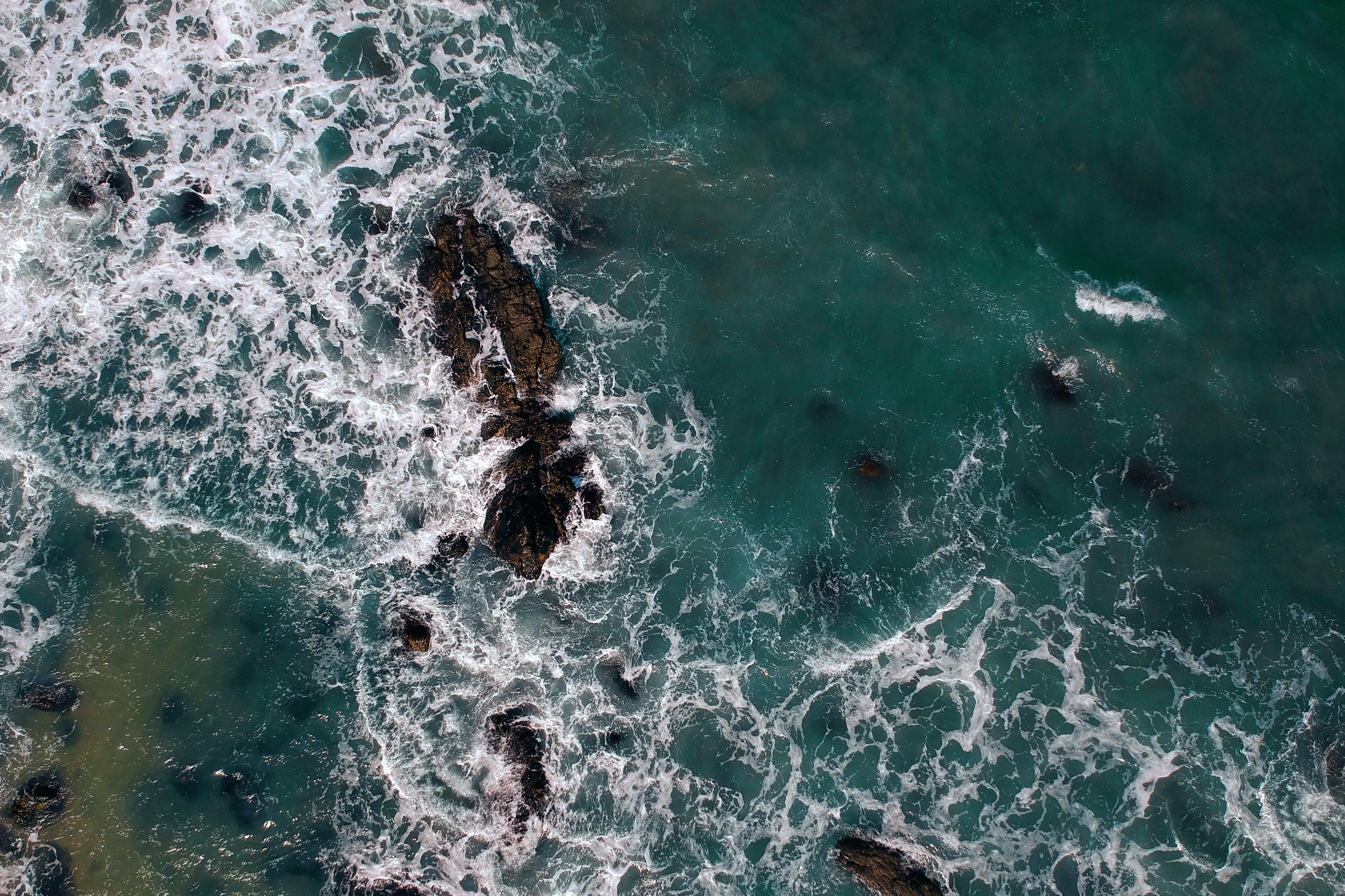Foto profissional grátis de água, borrifar, mar, maré