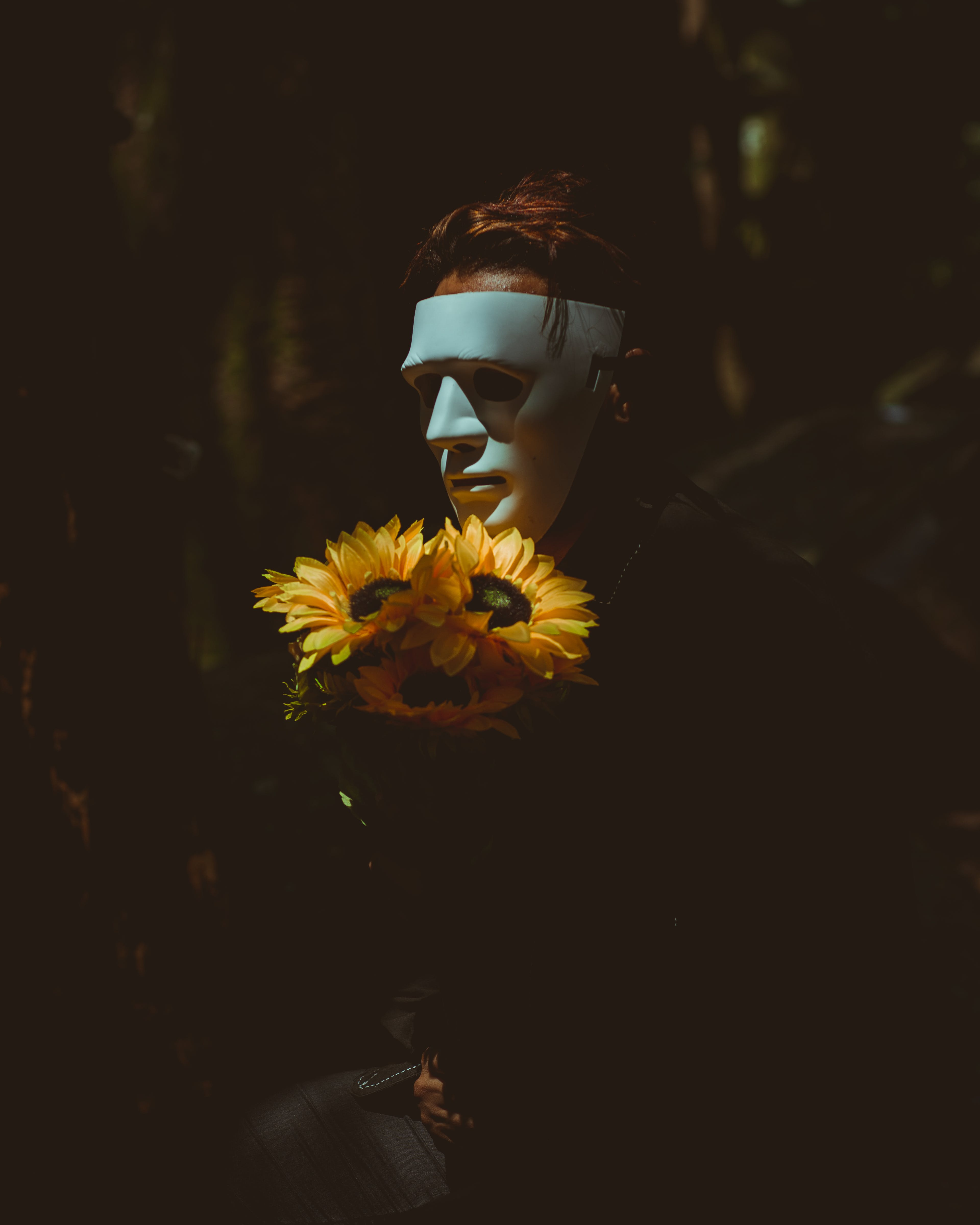 Kostenloses Stock Foto zu blumen, flora, geheimnis, gruselig