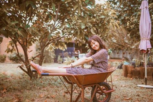 Fotos de stock gratuitas de bonita, carretilla, divertido, feliz