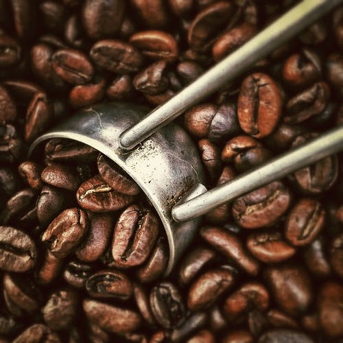 Kostenloses Stock Foto zu bohnen, frisch, kaffee, koffein