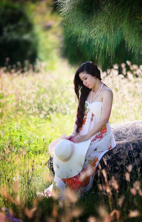 Imagine de stoc gratuită din câmp, de sex feminin, fată, femeie