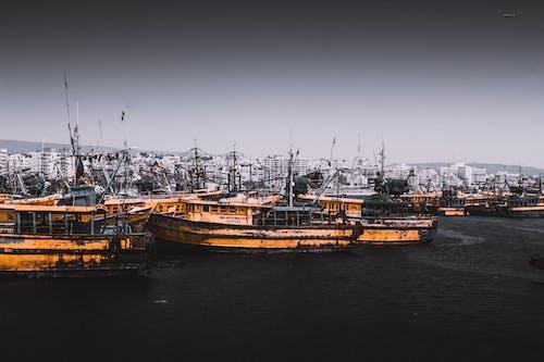 Fotos de stock gratuitas de agua, bahía, barca, barco