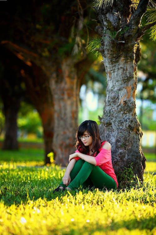감정, 귀여운, 들판, 라이프스타일의 무료 스톡 사진
