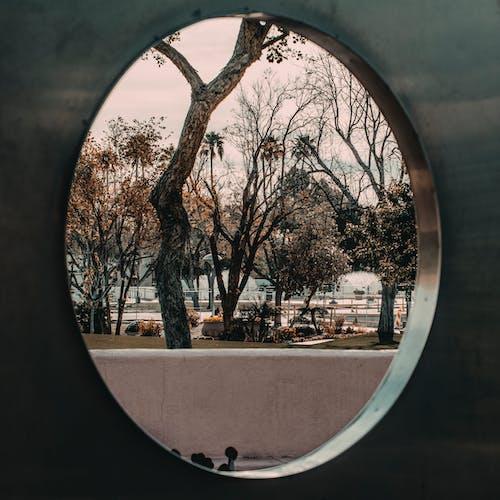 アート, パーク, 建築, 形状の無料の写真素材