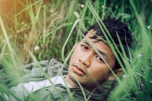 Kostenloses Stock Foto zu asiatische modell, asiatischer mann, fackel, gras