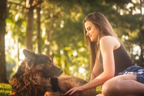 Бесплатное стоковое фото с женщина, женщина с собакой, животное, немецкая овчарка