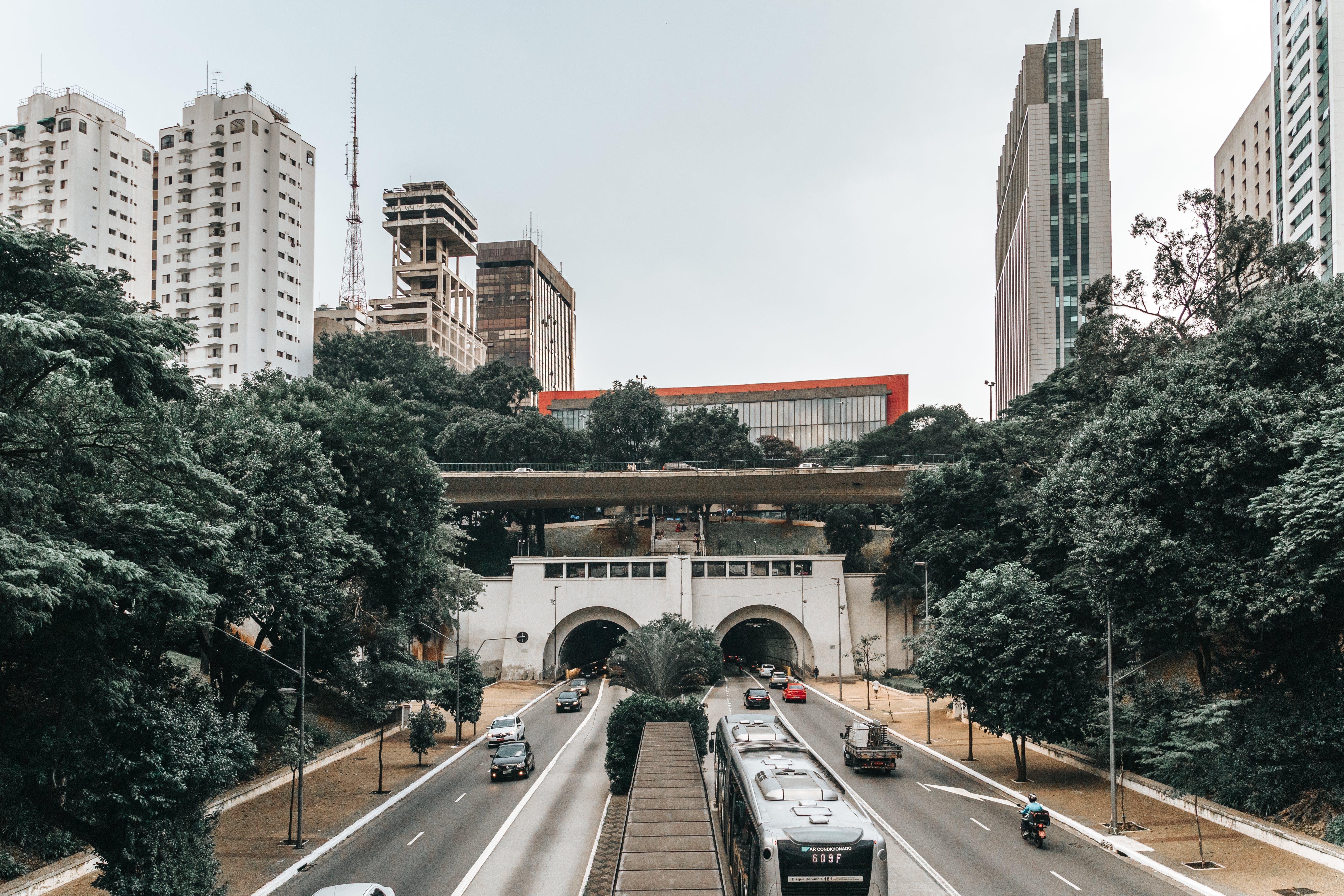Gray Bus at Road
