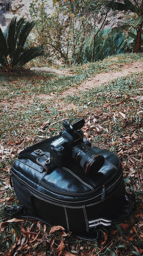 Free stock photo of camera, camera equipment, camera lens, camera strap