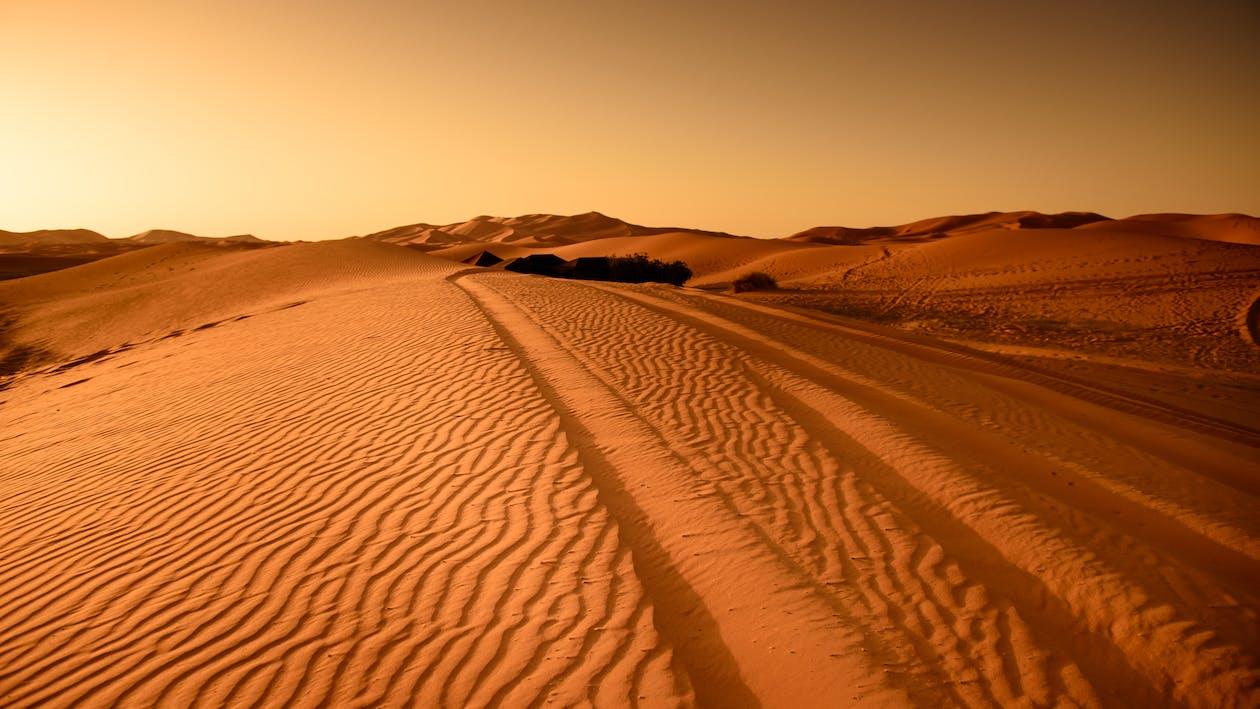 άγονος, αμμόλοφος, άμμος