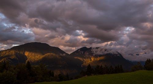 Foto d'estoc gratuïta de alba, arbres, boira, capvespre