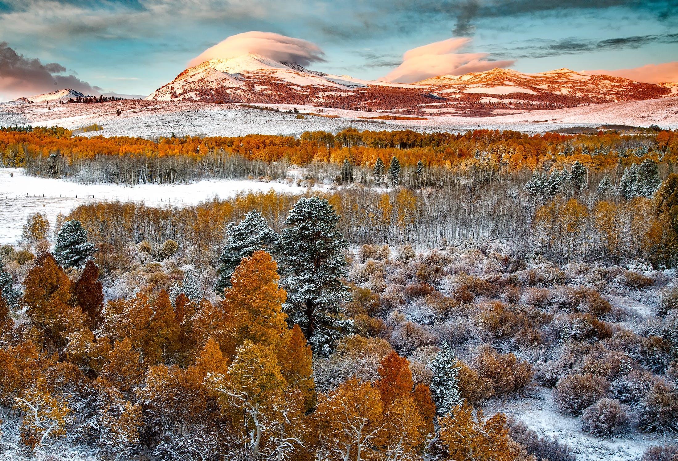 Kostenloses Stock Foto zu bäume, berg, landschaft, landschaftlich
