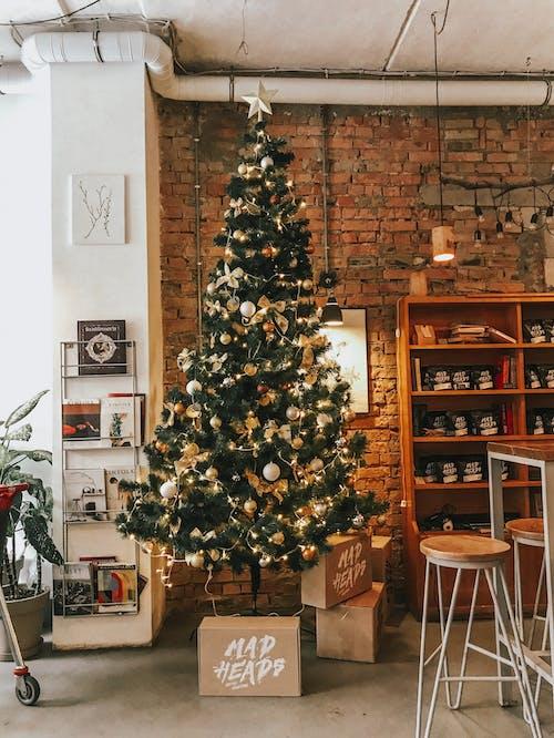 Ilmainen kuvapankkikuva tunnisteilla huone, huonekalu, hylly, joulu