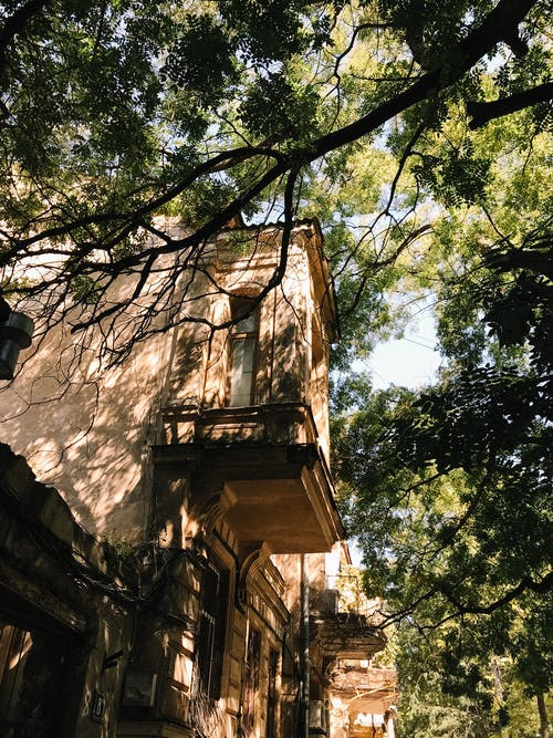 Low Angle Photography of Building Structure Near Trees