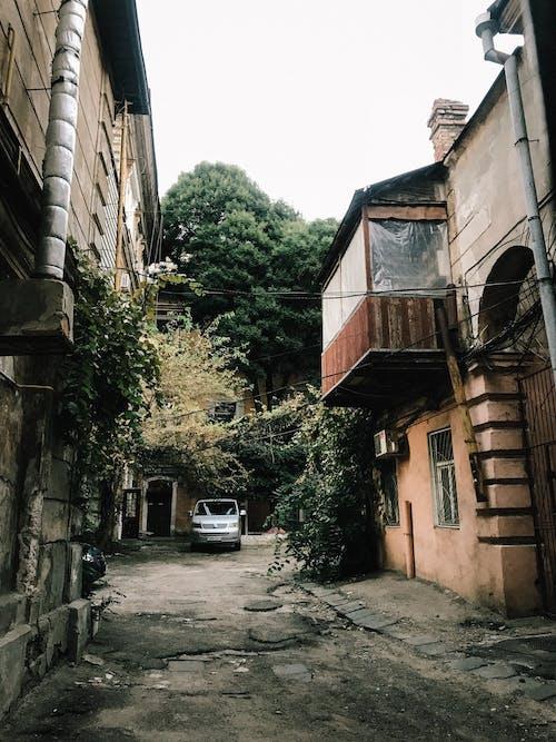 Ingyenes stockfotó ablakok, autó, építészet, fák témában