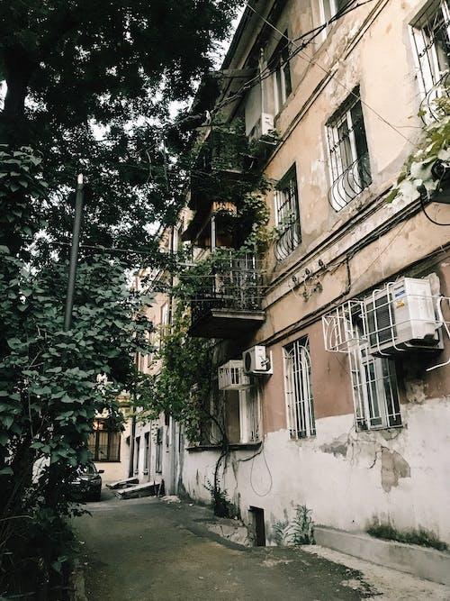 Fotos de stock gratuitas de al aire libre, apartamento, árbol, arquitectura