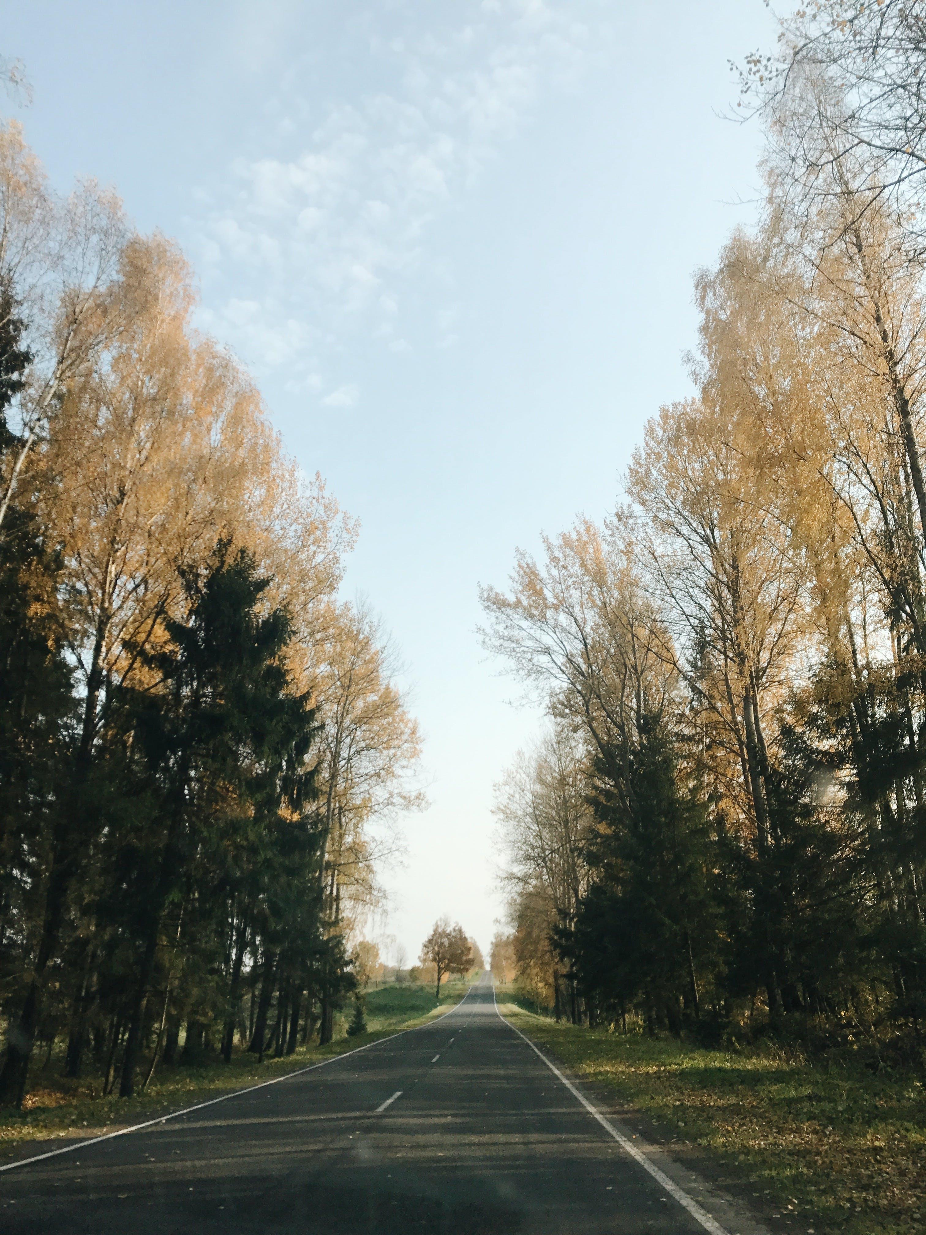 Foto d'estoc gratuïta de asfalt, autopista, carretera, carretera asfaltada