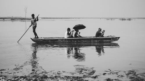 Základová fotografie zdarma na téma černobílá, příroda, zátiší