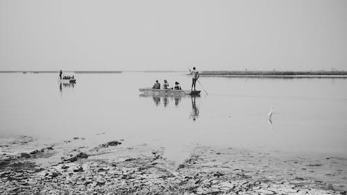 Základová fotografie zdarma na téma černobílá, příroda, umělecký