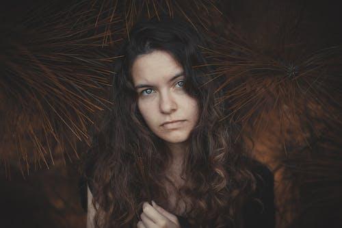 きれいな女性, ブルネット, ポージング, まじめの無料の写真素材