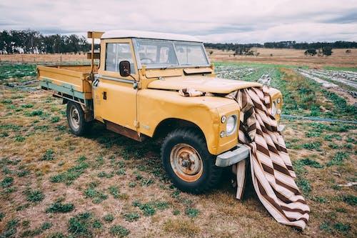 Fotos de stock gratuitas de amarillo, camión, campo, césped