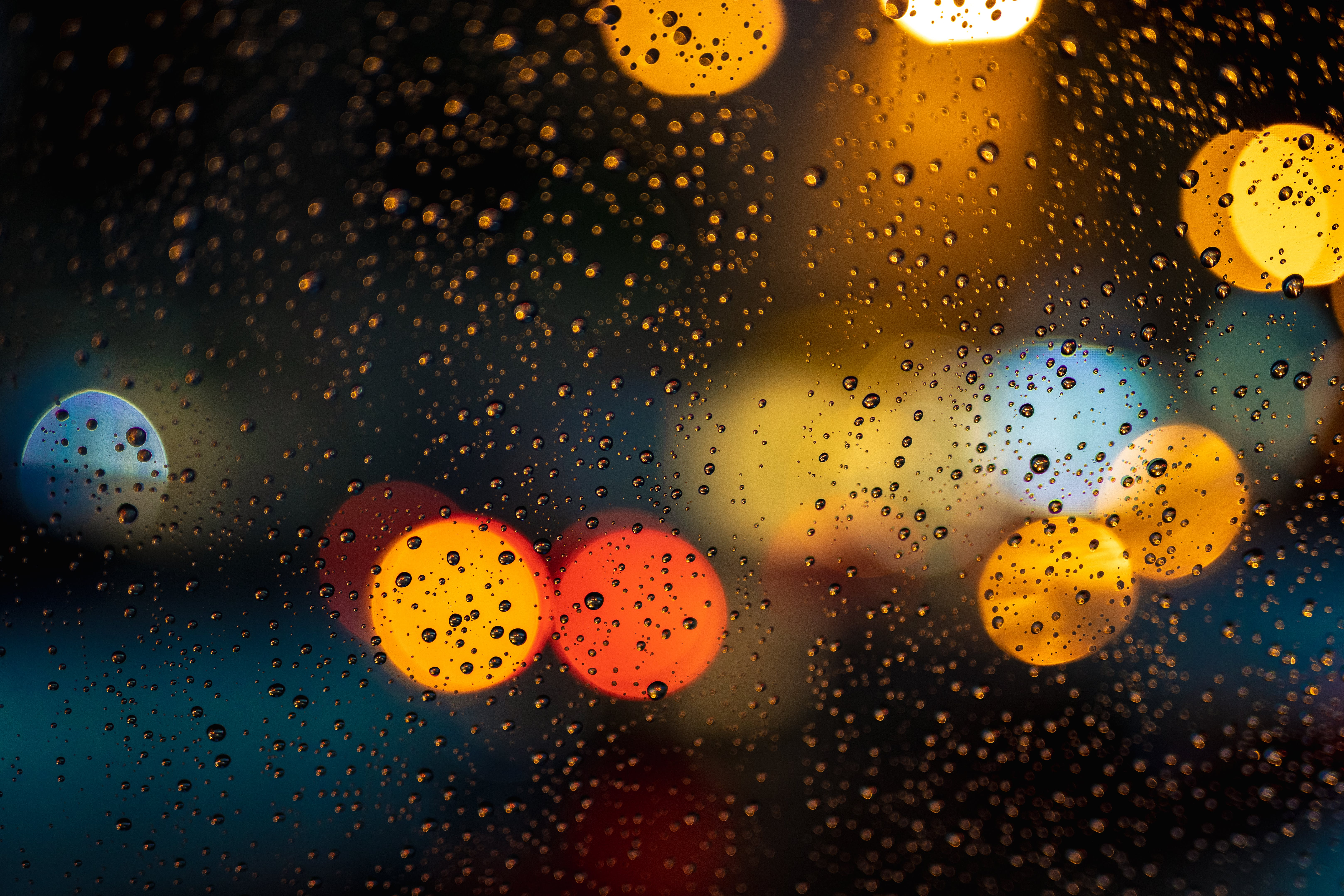 Free stock photo of blurred background, close-up, colors, dark