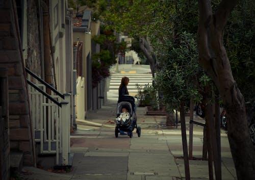 Darmowe zdjęcie z galerii z chodnik, drzewa, dziecko, matka