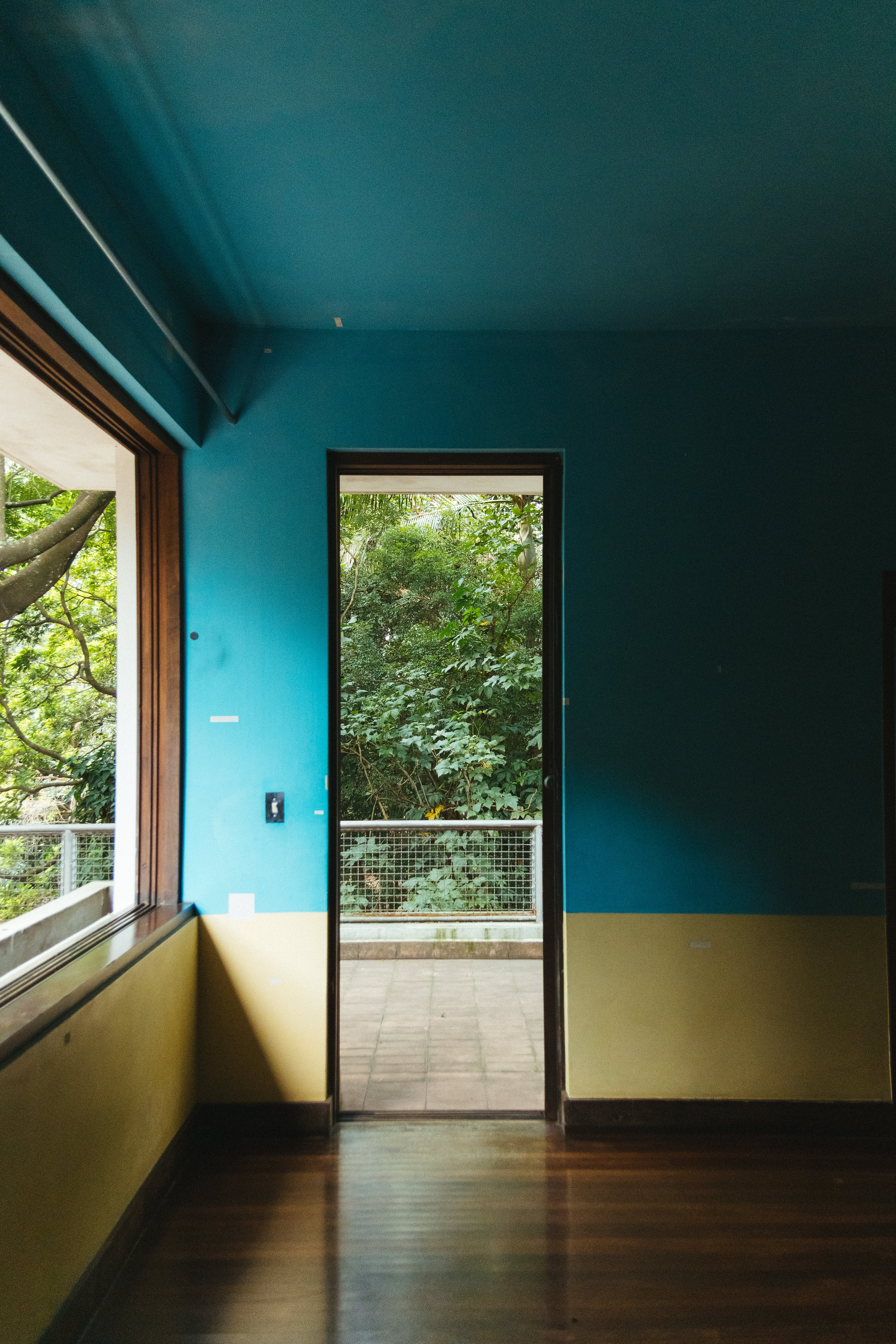 Blue and Yellow Painted Room Wall