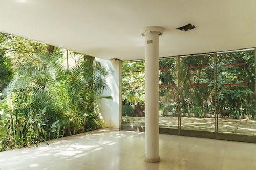 Бесплатное стоковое фото с архитектура, архитектурная деталь, Архитектурное проектирование, в помещении