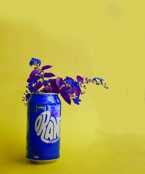 藍色的飲料罐上的藍葉的植物