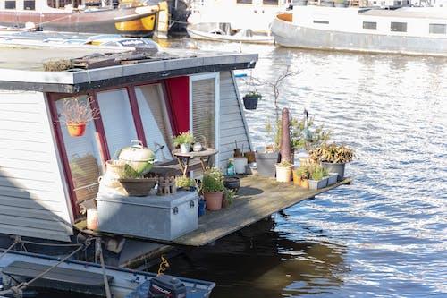 船, 船屋, 花, 阿姆斯特丹 的 免费素材照片
