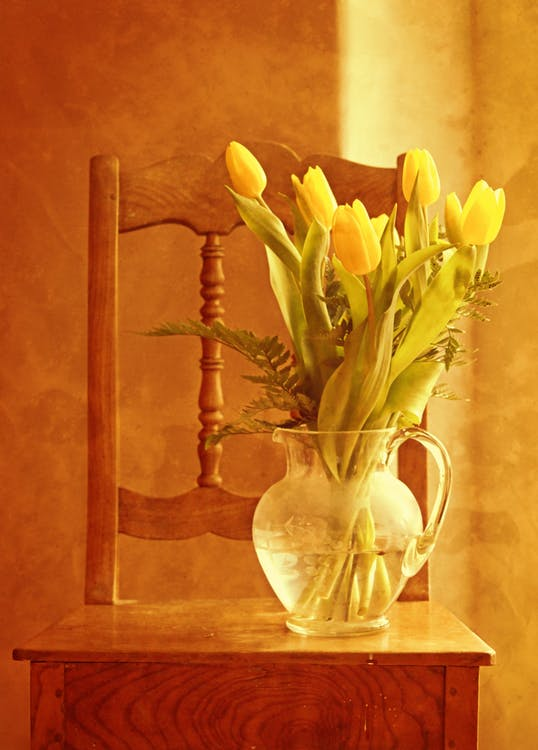 Yellow Tulips in Clear Glass Pitcher Place on Brown Wooden Chair