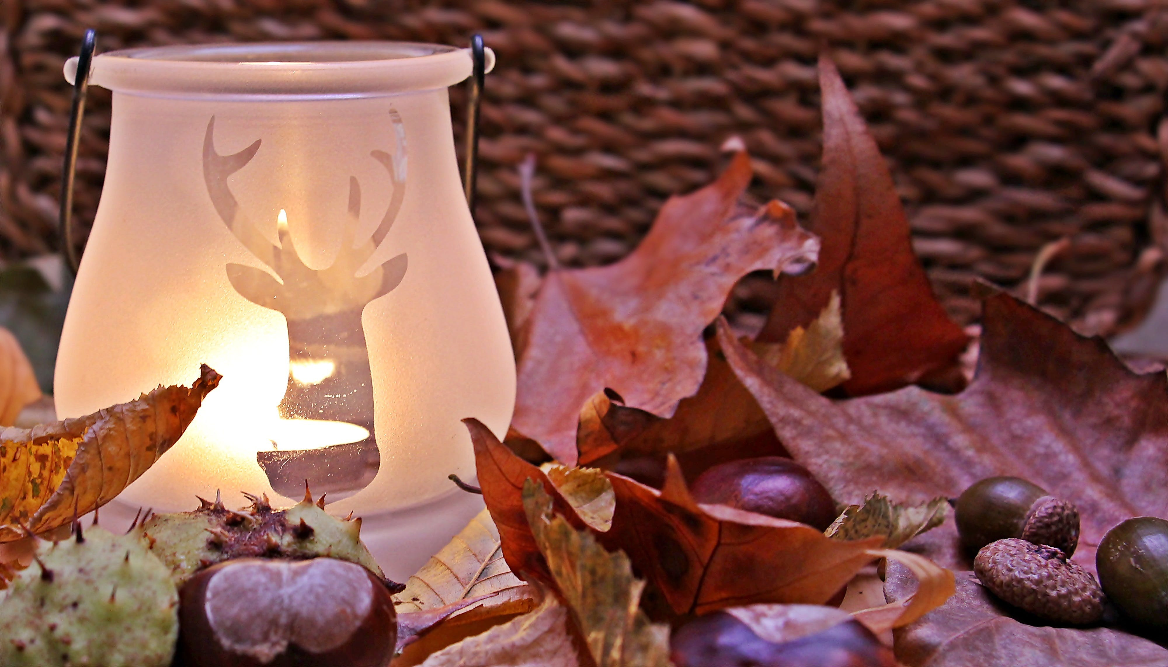 Shallow Focus Photograph Clear Reindeer Print Candle Glass Candle Lamp Near Red Dried Leaf