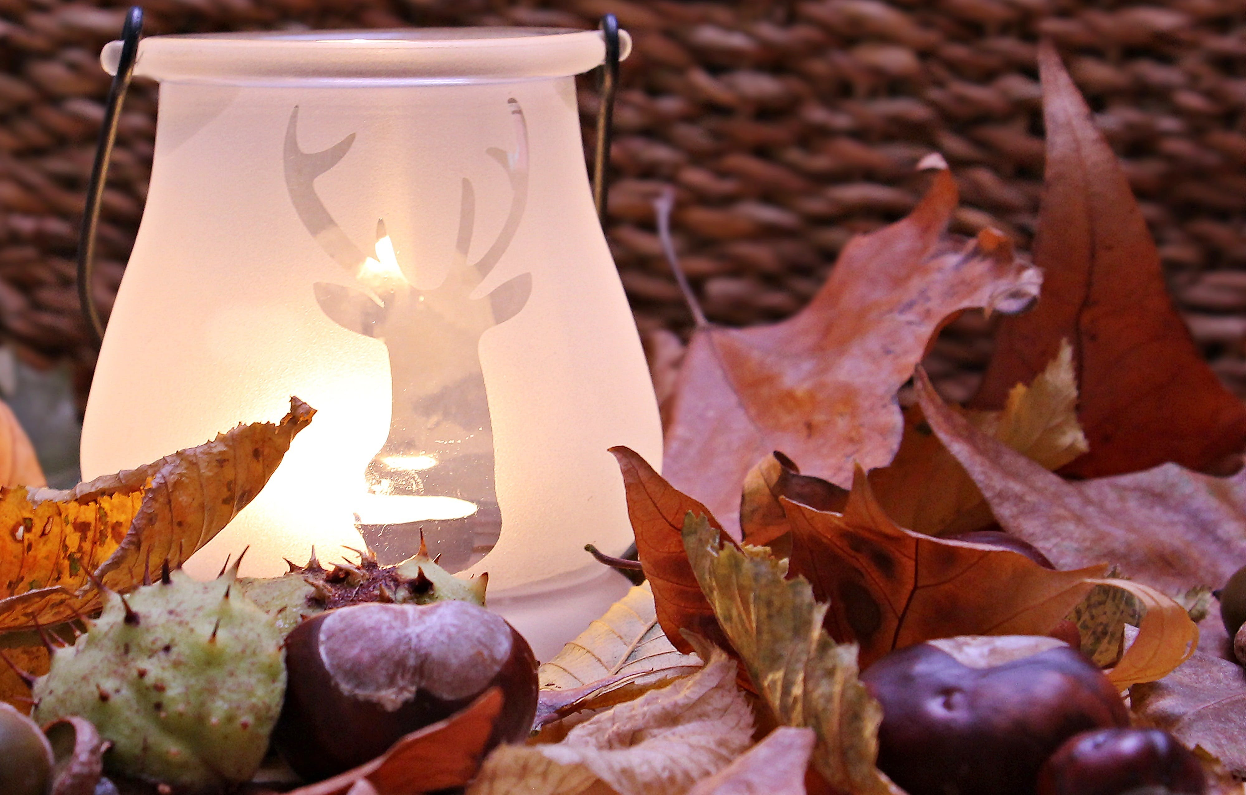 White Ceramic Lamp With Deer Cutout Near Leaves