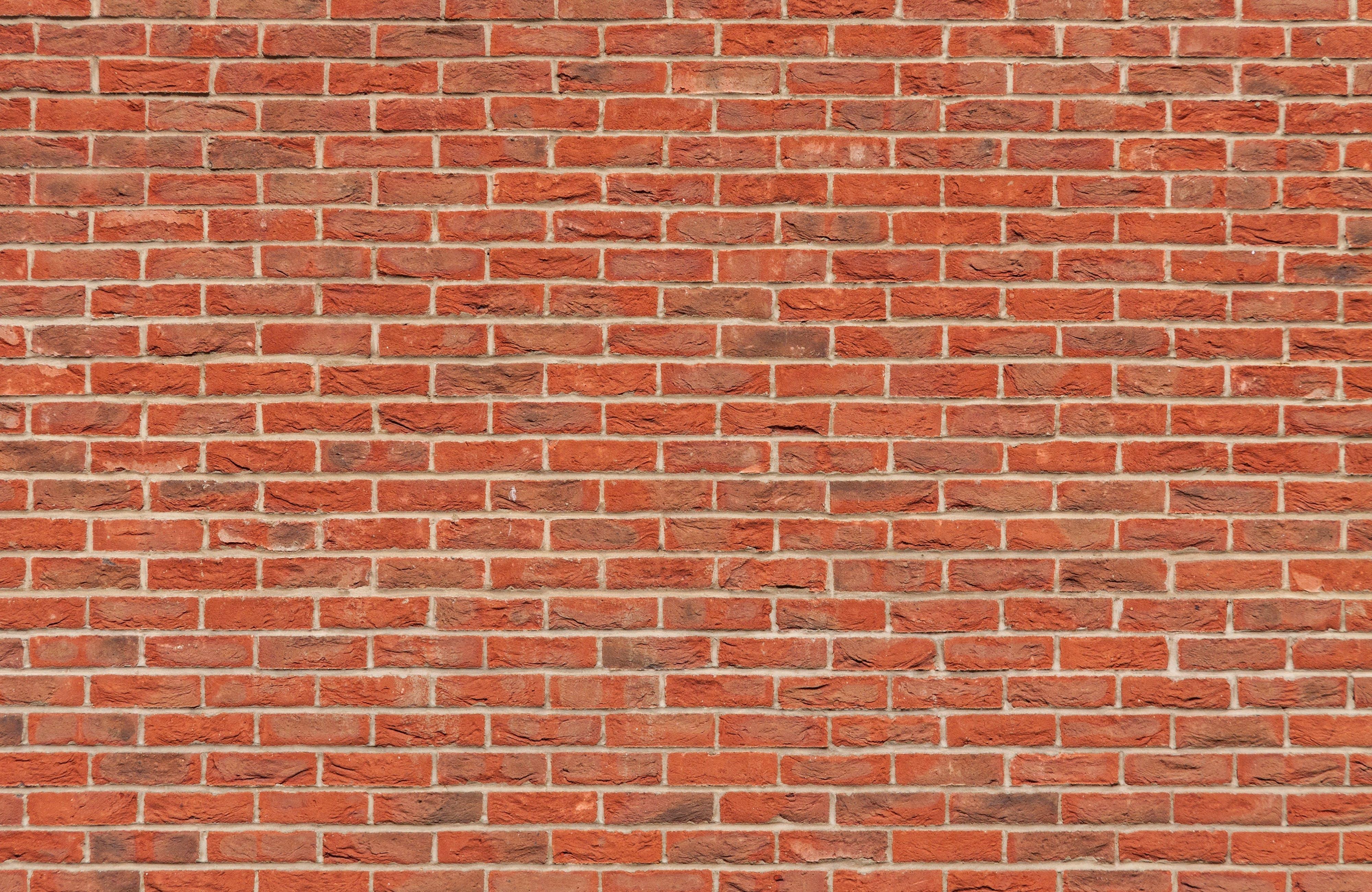 Kostenloses Stock Foto zu backsteinmauer, mauer, stein, textur