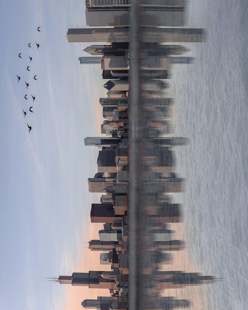 Бесплатное стоковое фото с вода, горизонт, закат, отражение