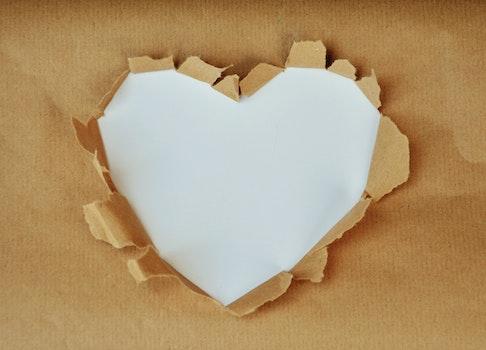 Free stock photo of love, heart, gift, white