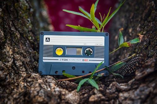 Shallow Focus Photo of Blue Cassette Tape